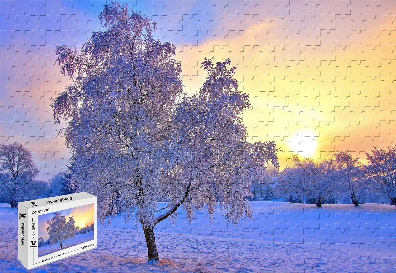 選ぶなら PigBangbang,20.6 X 15.1インチ 15.1インチ 木製 - 冬の雪の木 霜の空 - 太陽 ミスト ミスト - 500ピース ジグソーパズル B07J4VSRK2, 前田かしわ店:c45373a6 --- sinefi.org.br