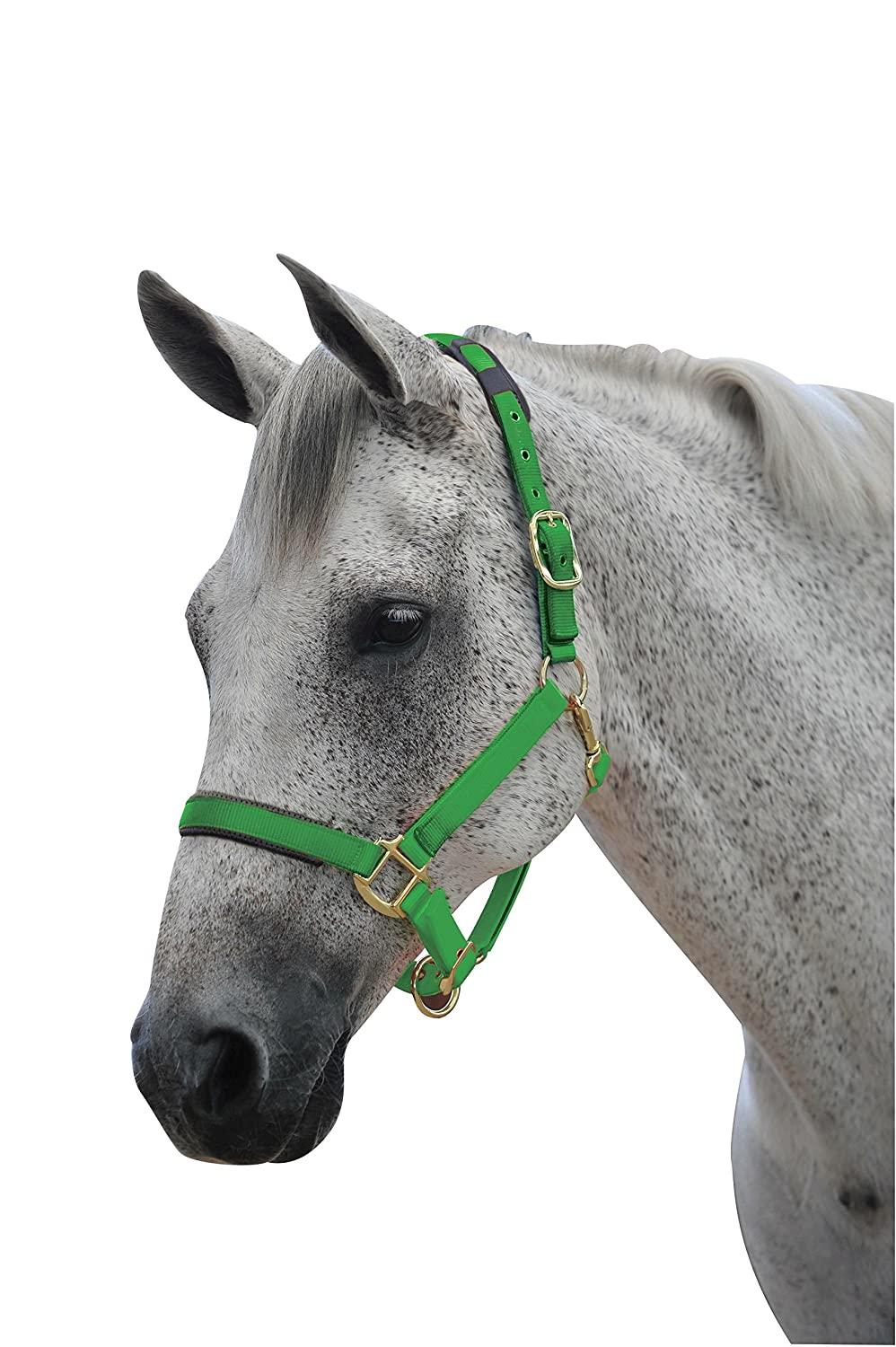 Roma Brights Breakaway Halter Full フル オレンジ B019EIFZJY