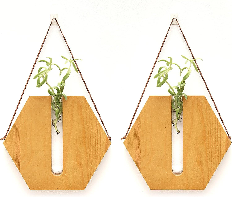 Beutikk Indoor Propagation Station - Home Decor - Test Tube Vase Planter - Wall Hanging Wood & Glass Terrarium - Office Decor - Modern Garden & Plant Station - Set of Two Hexagon Design Terrariums