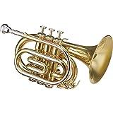 Roy Benson MOD.PT-302 BB Lacquered finish, Bell diameter 125 mm, Pocket Trumpet with Light Rectangular Case