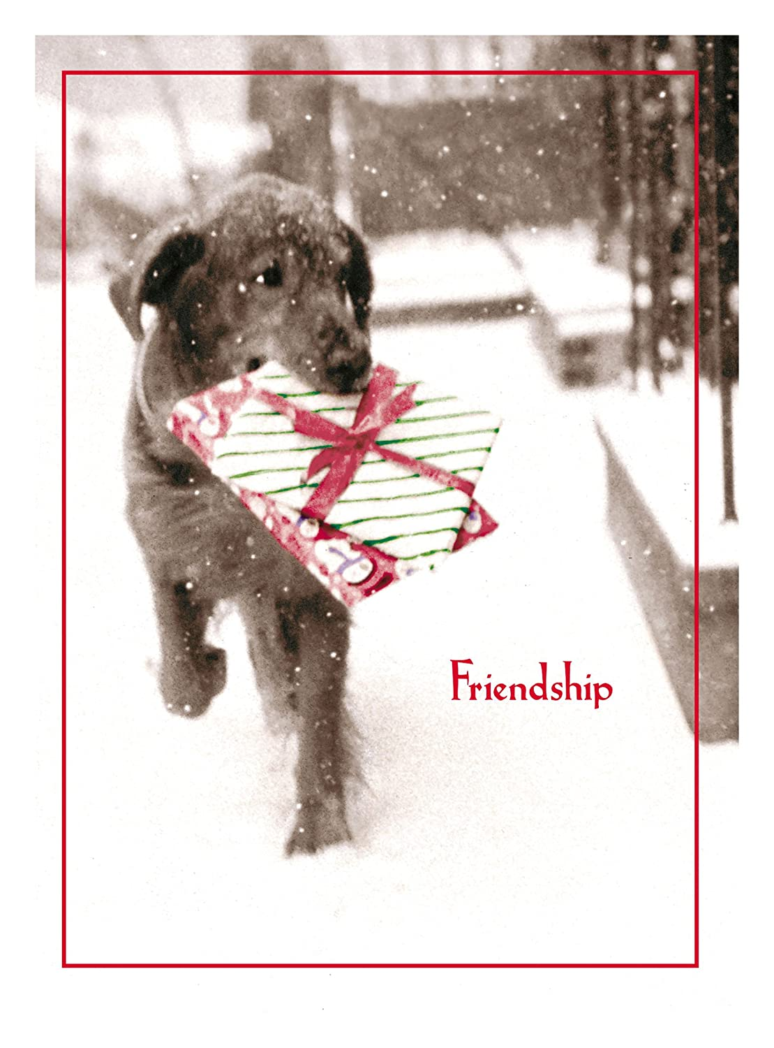 Amazon.com : Avanti Christmas Cards, Friendship is the Best Gift of ...