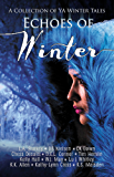 Echoes of Winter: A Wintery YA Short Story Collection