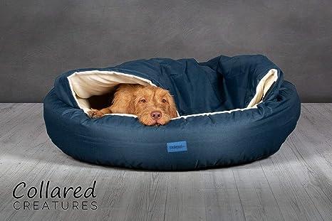 Collared Creatures Deluxe - Cama para Perro (cómodo), Color Azul
