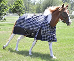 Jeffers Horse Blanket Pins