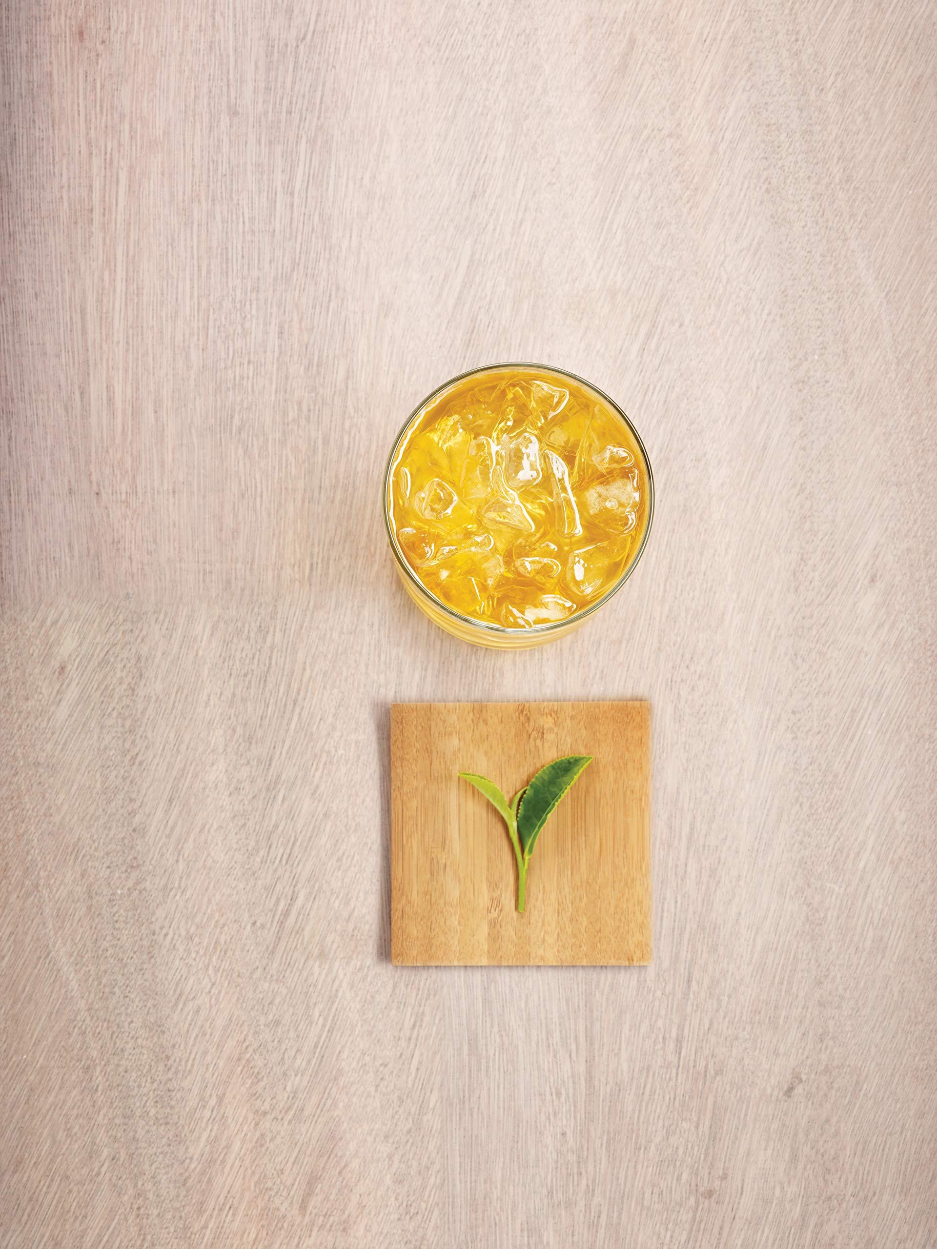 Tazo Zen Green Unsweetened Fresh Brewed Iced Tea Non GMO, 1 gallon, Pack of 24 by TAZO (Image #6)