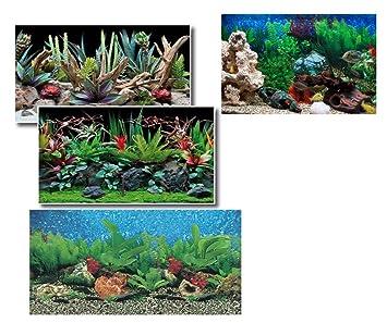 Takestop® - Fondo para Acuario de 50 x 115 cm. Película con imágenes externos, fantasías al azar: Amazon.es: Jardín