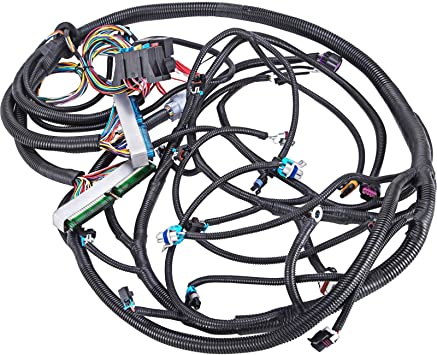 Amazon.com: Mophorn Standalone Swap Wiring Harness for 03-07 Chevy GMC  Cadillac Vortec 4L60E Standalone Swap Wiring Harness DBW 4.8 5.3 6.0 EV6  LS1 Wiring Harness Kit 13-15 ft: AutomotiveAmazon.com