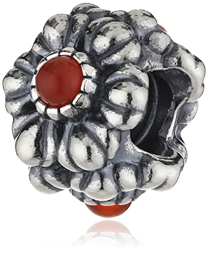 Amazon Com Pandora Silver And Carnelian Floral July Birthstone