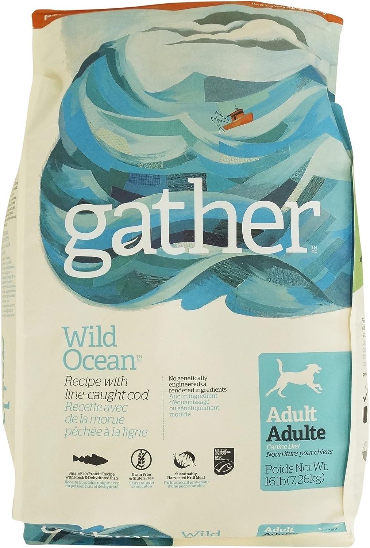 Petcurean Gather Wild Ocean Recipe Dry Dog Food - 16 lb. Bag