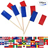 JBCD 100 Pcs France Flag Toothpicks French Flags Cupcake Toppers Decorations, Cocktail Toothpick Flag Cake Topper Picks Mini