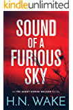 Sound of a Furious Sky: FBI Agent Domini Walker Book 1 (Dom Walker)