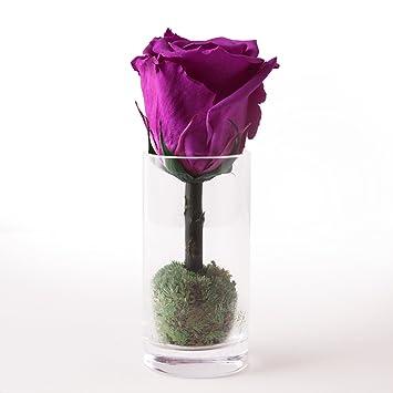 Blumen-Gesteck haltbar 3 Jahre aus ewiger Natur-Rose im Glas ...