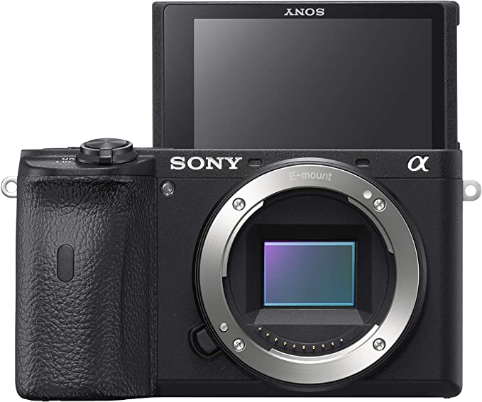 Sony E-mount camera A6600 APS-C