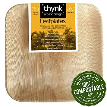 Thynk Palm Leaf Plates All Natural and Compostable Disposable Plates Eco Friendly and Elegant  sc 1 st  Amazon.com & Amazon.com: Thynk Palm Leaf Plates All Natural and Compostable ...