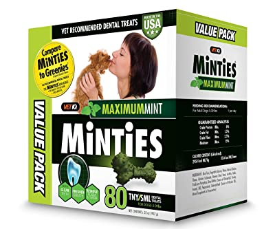 VetIQ Minties Dog Dental Bone Treats