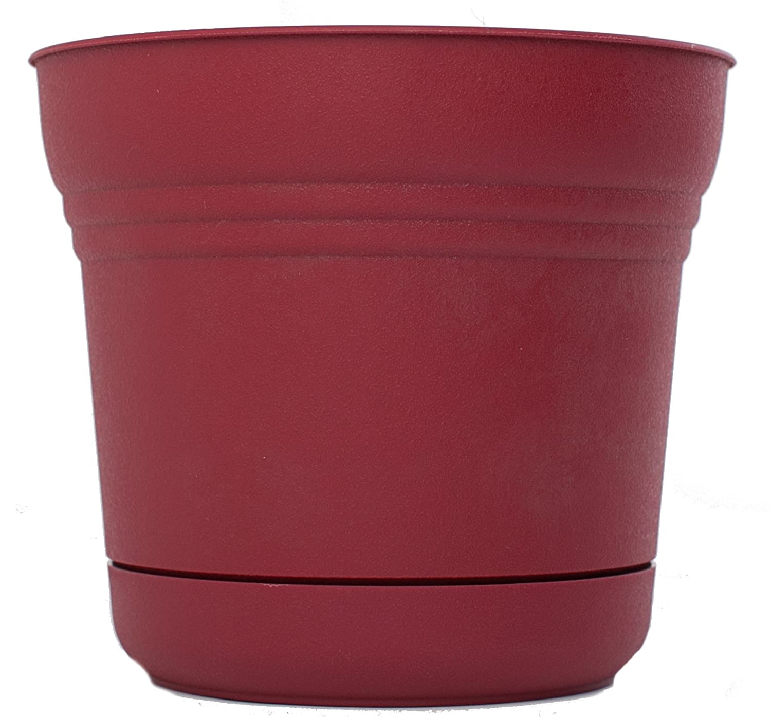 Bloem SP0512-12 12-Pack Saturn Planter, 5-Inch, Union Red