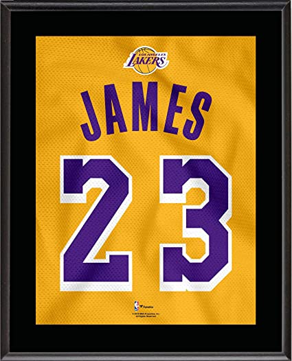 hot sale online 20205 7c601 LeBron James Los Angeles Lakers 10.5