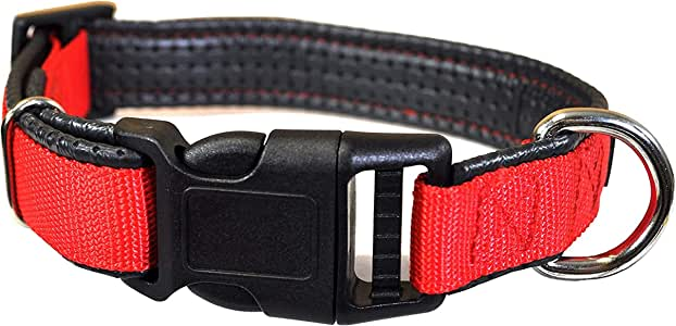 Downtown Pet Supply Plastic Quick Release Dog and Puppy Collar (Red, Small)
