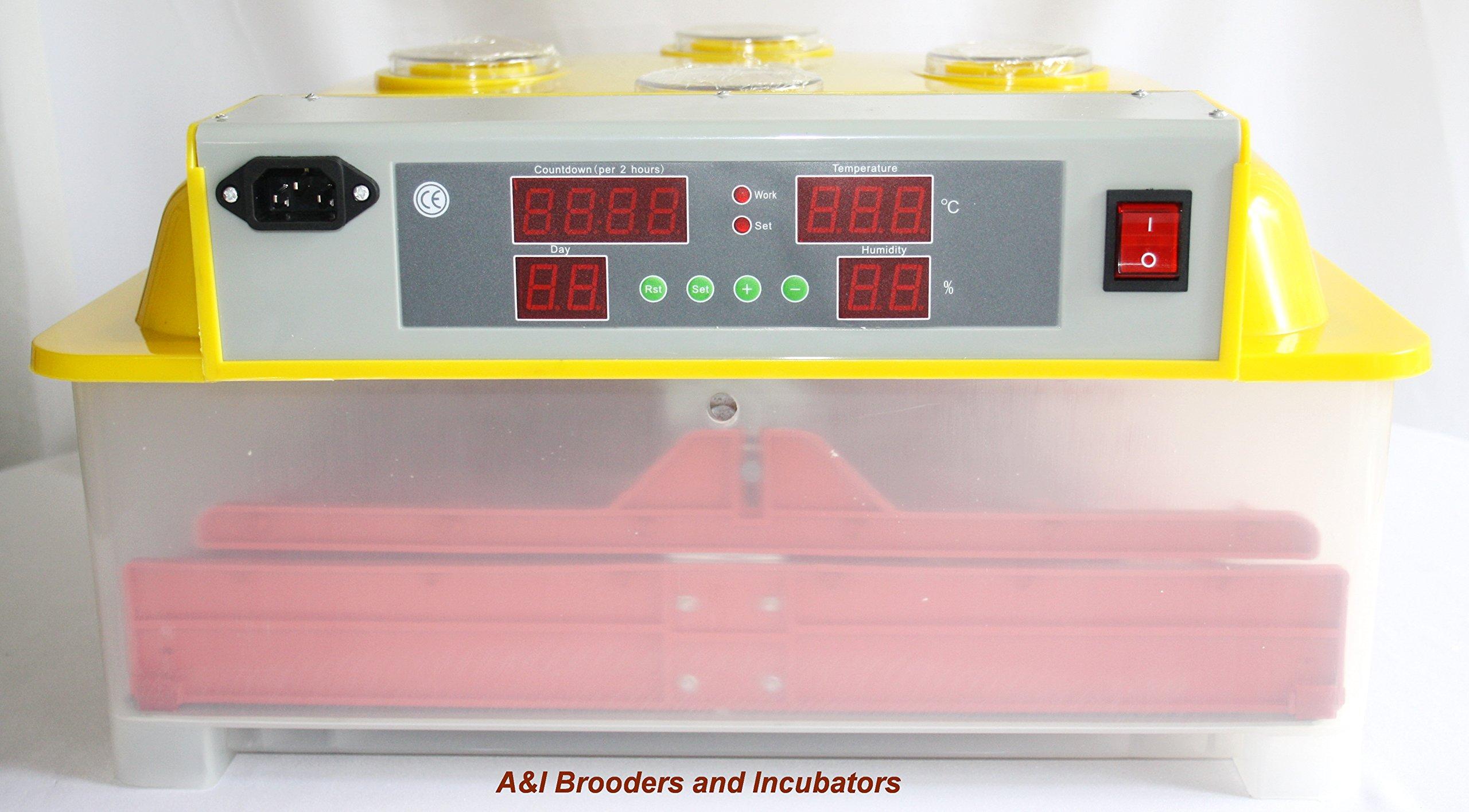 A&I - 144 Quail Egg Digital Incubator / Hatcher AUTOMATIC TURNER Avian Poultry Local USA DISTRIBUTOR 110 Volt Full Warranty