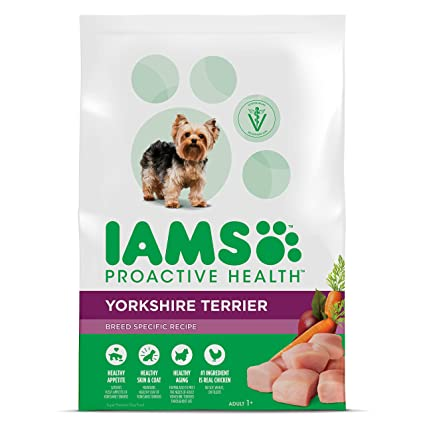 Amazon Com Iams Proactive Health Adult Yorkshire Terrier Dry Dog