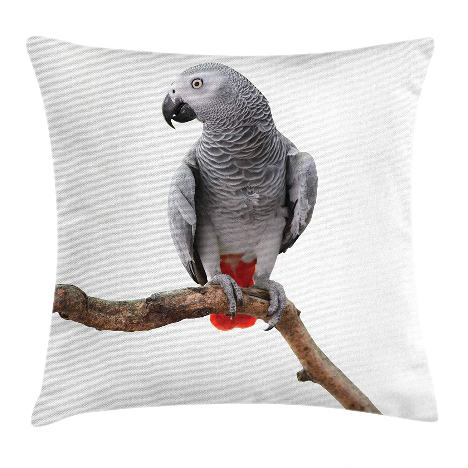 "Ambesonne Grey Throw Pillow Cushion Cover, Parrot Bird Psittacus Erithacus Standing on a Branch Tropical Nature Wildlife, Decorative Square Accent Pillow Case, 16"" X 16"", White Grey"