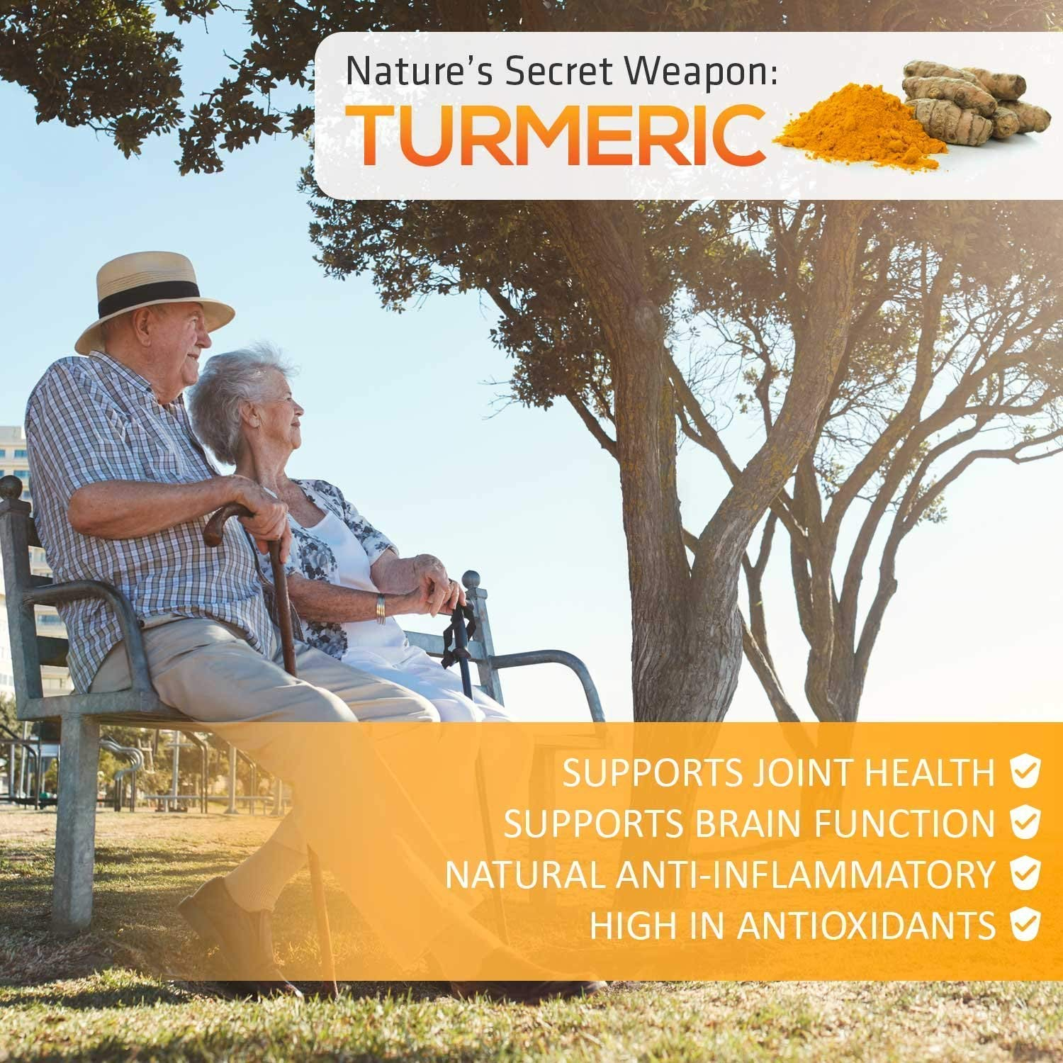 Turmeric Curcumin 95% Curcuminoids Highest Potency with BioPerine and Ginger 1950mg - Black Pepper for Best Absorption, Made in USA, Best Vegan Joint Pain Relief, Turmeric Ginger Pills - 60 Capsules