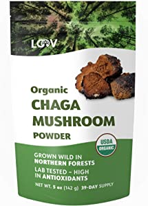 LOOV Organic Chaga Mushroom Powder, Wild-Harvested, Sustainably Grown in Pristine Nordic Forests, not Cultured, Whole Raw Chaga, High in Antioxidants, 5 Ounces, 39-Day Supply