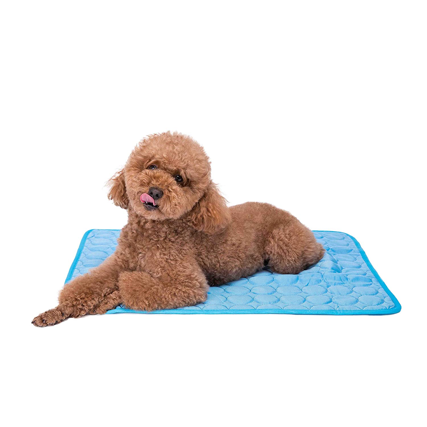 Faith Force Pet Cooling Mat - Ice Silk Cooling Mat for Dogs & Cats, Portable & Washable Pet Cooling Blanket for Outdoor, Car Seats, Beds and More in Summer