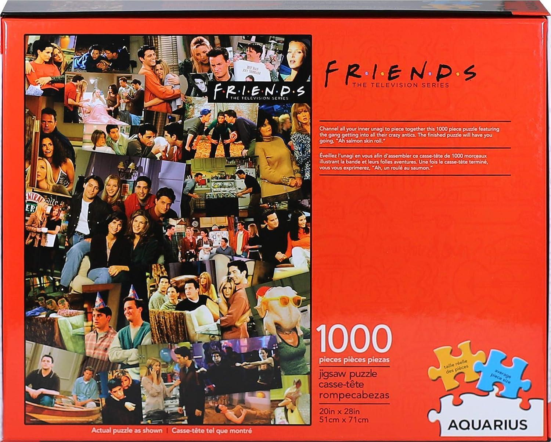 Aquarius Friends Collage 1000 Piece Jigsaw Puzzle