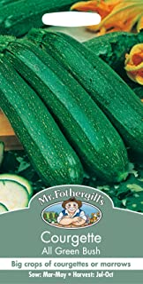 Pictorial Packet Courgette All Green Bush Vegetable 20 Seeds Mr Fothergills