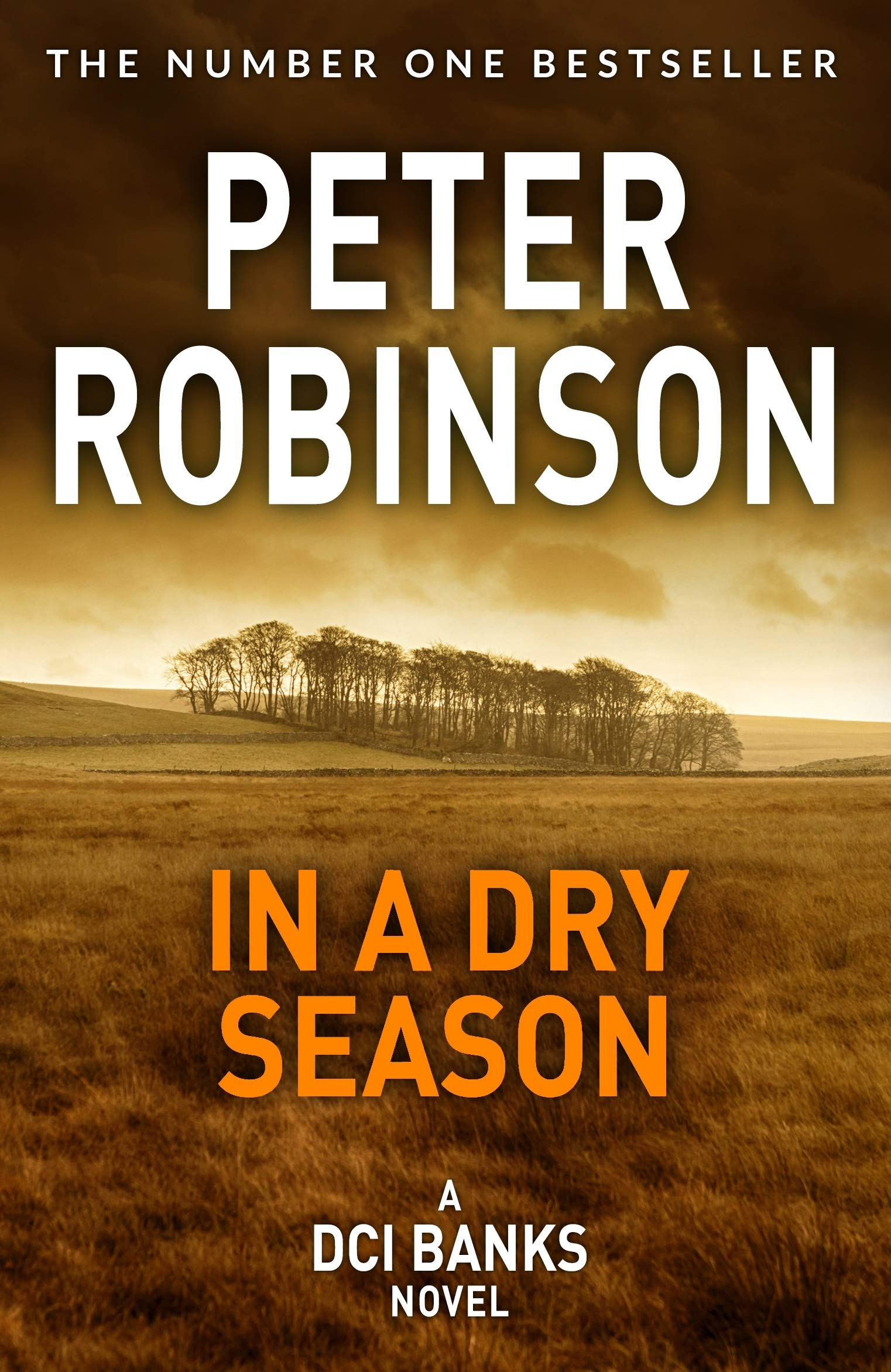 Robinson, P: In A Dry Season The Inspector Banks series: Amazon.es ...
