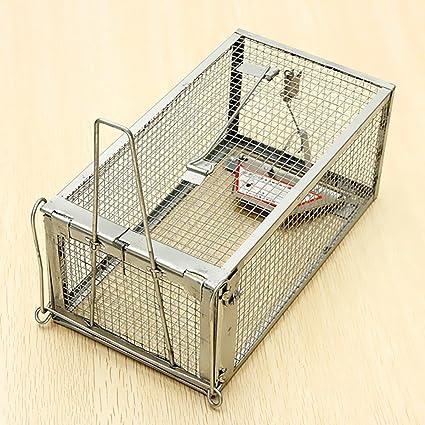 Generic YanHongUK3150821 _ 28 1yh4620yh puerta Reino Unido stock humano Animal vivo L roedores en 3 ...