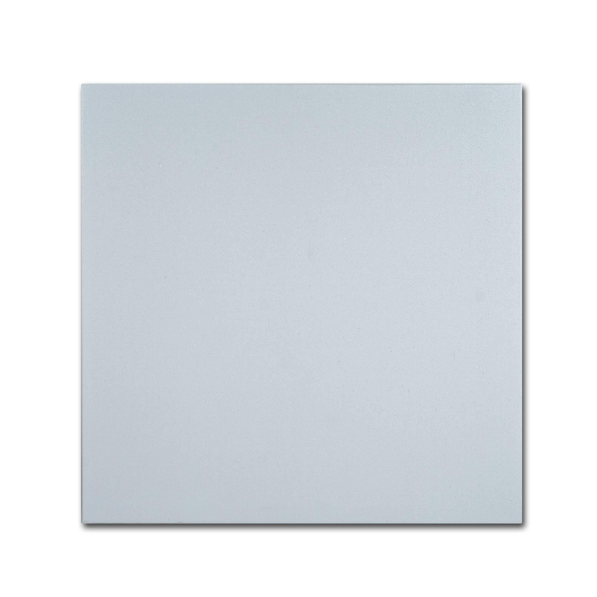 Trademark Fine Art Professional Blank Canvas on Stretcher Bars, 35'' x 35'', White