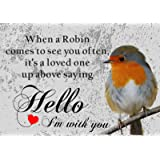Robin Bird Wildlife Loved One Vintage Style Metal Wall Plaque Sign 15 x 20 cm