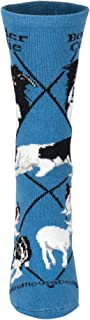 product image for Wheel House Designs Border Collie Women's Argyle Socks (Shoe size 6-8.5)
