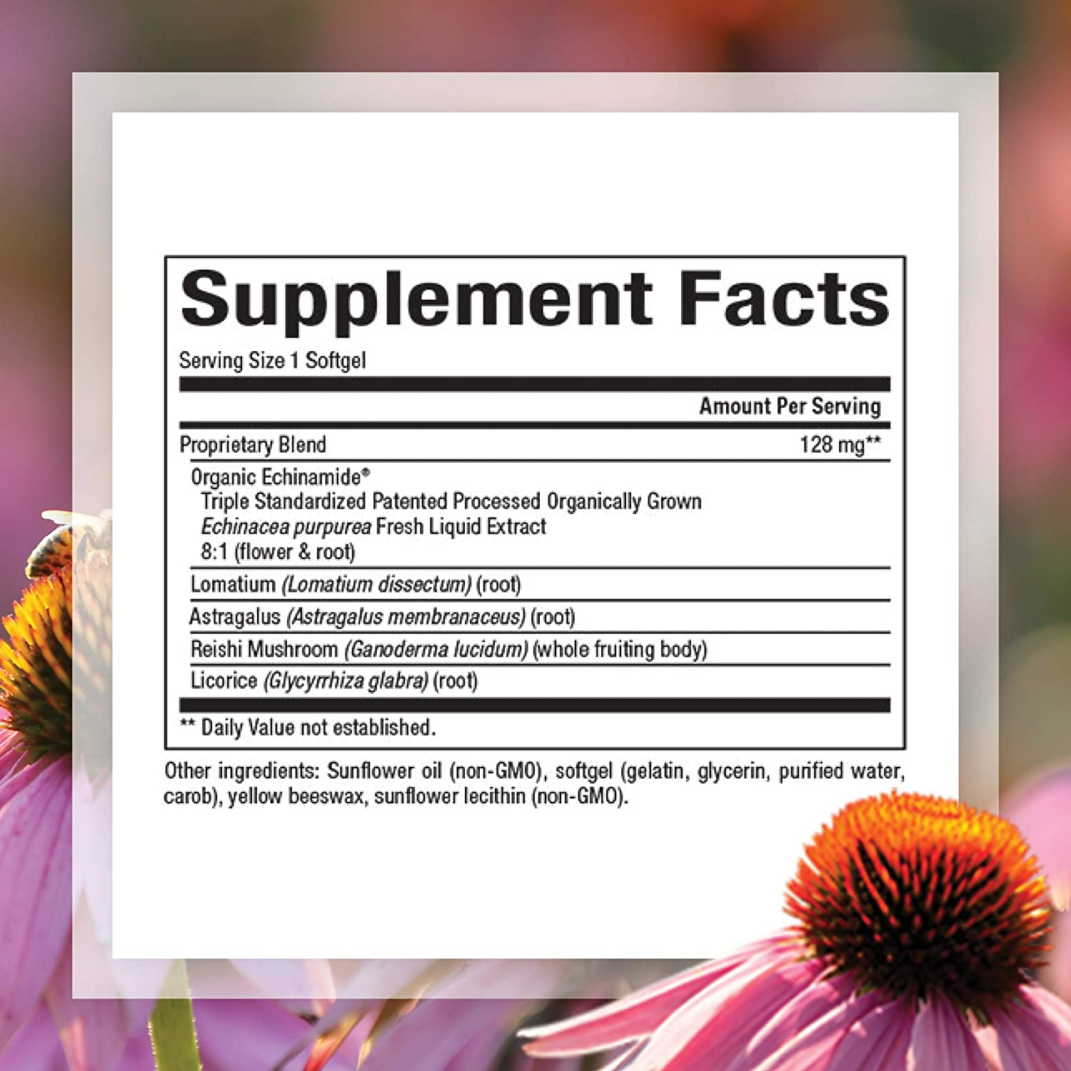 Natural Factors, Anti-V Formula, Echinacea Supplement for Immune and Wellness Support, Organic, Non-GMO, 60 softgels (60 Servings)