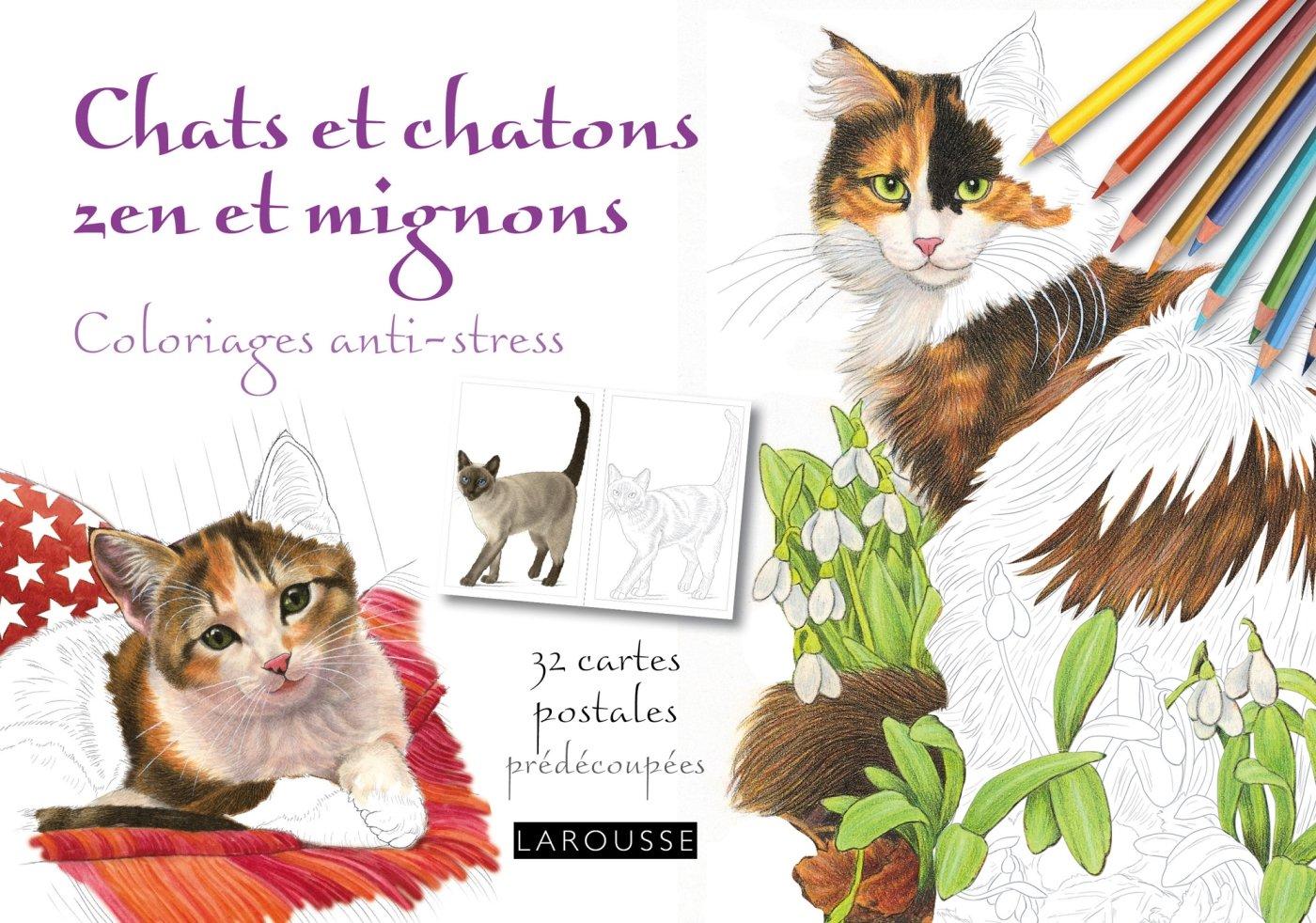 Chats et chatons zen et mignons : Coloriages anti-stress