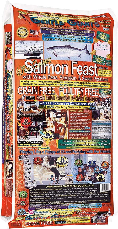 GENTLE GIANTS Canine Nutrition Salmon Dry Dog Food, 18 Lb Bag