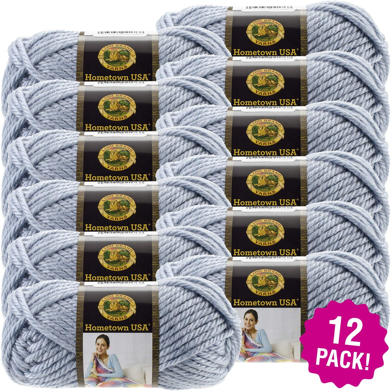 Lion Brand 99104 Hometown USA Yarn 12/Pk-St Paul Sky, Pack