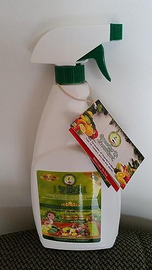 GreenEarthNanoPlant Organic Liquid Fertilizer 22 oz  Ready to Use Spray