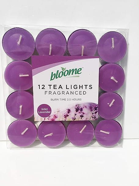 prix raisonnable soldes vente pas cher Bloome Lot de 12 Bougies Chauffe-Plat parfumées: Amazon.fr ...