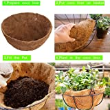 "Coco Liners for Planters,12"" Round Coco Fiber"