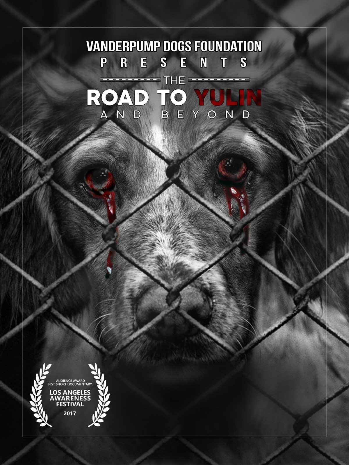 The Road to Yulin And Beyond on Amazon Prime Video UK