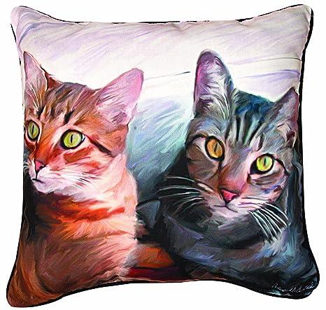 Amazon.com: Manual 2 patas de gatos y gato decorativas ...