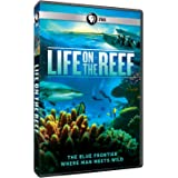 Life on the Reef [Import]