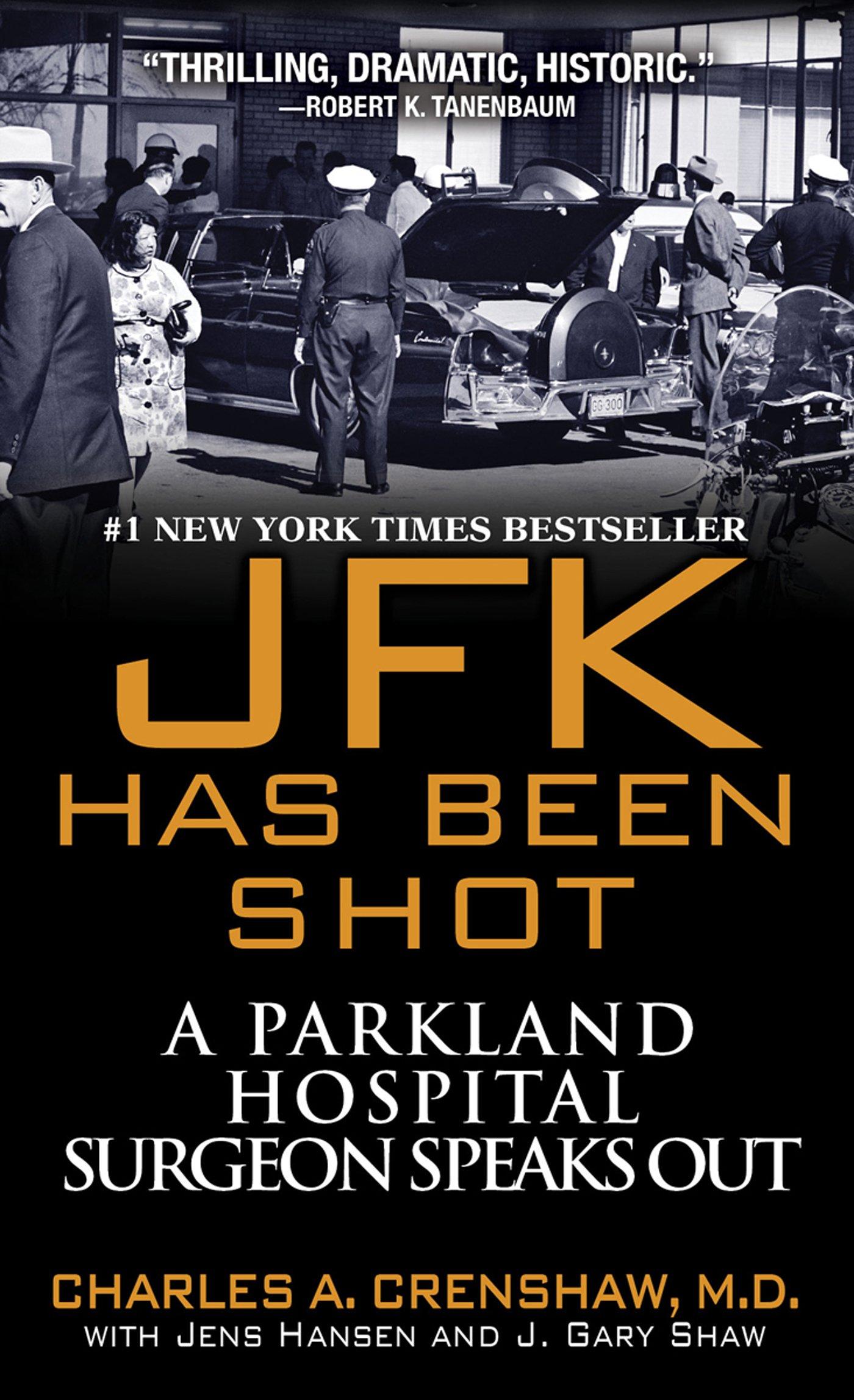 Download JFK Has Been Shot PDF