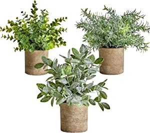 Artificial Potted Plants Small Mini Fake Plastic Potted Plants Shelf Decorations for Home, Kitchen Counter Cabinet, Office Bathroom Indoor Farmhouse Greenery Eucalyptus Rosemary Boxwood Set of 3