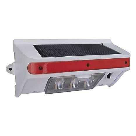Amazon.com: Tri-Lynx 00028 Solar-Powered Exterior LED Lite with Motion, Dusk/Dawn Sensor - White: Automotive