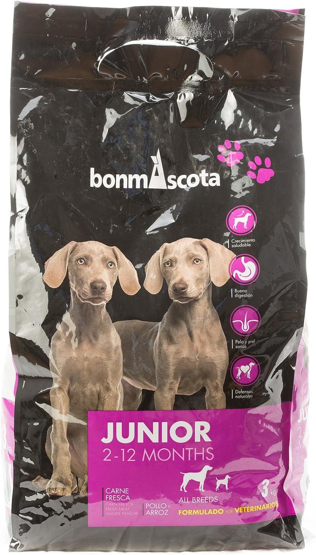Pienso Premium Bonmascota Junior 2-12 meses. alto porcentaje ...