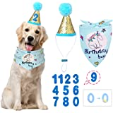 BANMODER Dog Birthday Bandana Square Scarf and Reusable Cute Doggie Birthday Party Hat with 0-8 Figures for Girls Boy